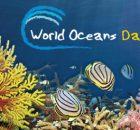 8 Ιουνίου Παγκόσμια Ημέρα Ωκεανών