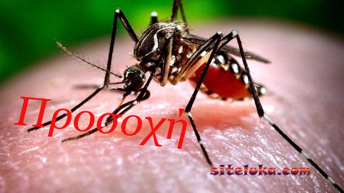 Αυξανονται τα κρουσματα τον ιο του Δυτικου Νειλου